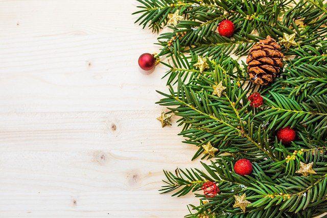 Тюменцам рассказали, где купить новогоднюю елку