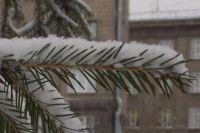 По данным синоптиков, днем в Новосибирской области столбики термометров опустятся до -14…-19 градусов.