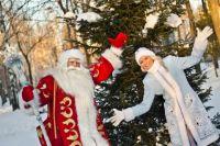 Какой праздник без новогодней елки