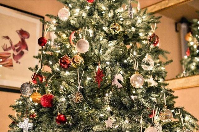 С 1 января МЧС России вводит новые правила установки елок дома. Новогодние деревья новосибирцев могут оказаться незаконными.