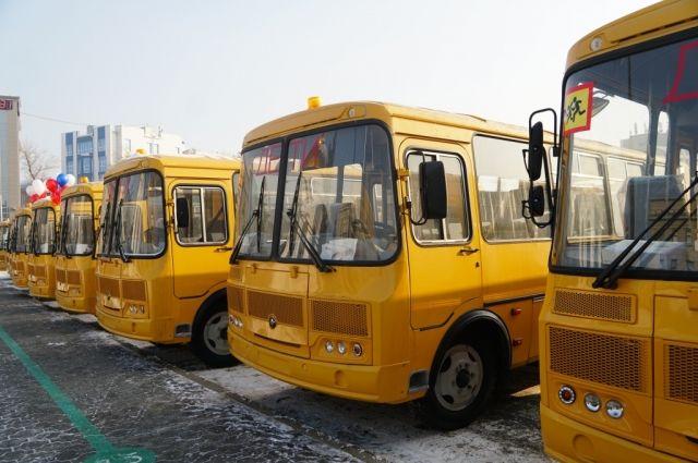 Школы Оренбургской области до нового года получат 35 новых современных автобусов.