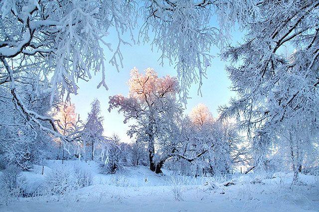 Долгосрочный прогноз погоды на февраль 2021 г.