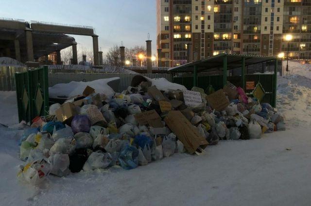 За последнюю неделю от жителей города поступили многочисленные жалобы на переполненные мусорные контейнеры во дворах.