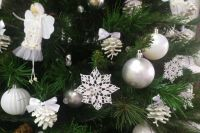 Две оренбурженки украли елку в новогоднюю ночь.