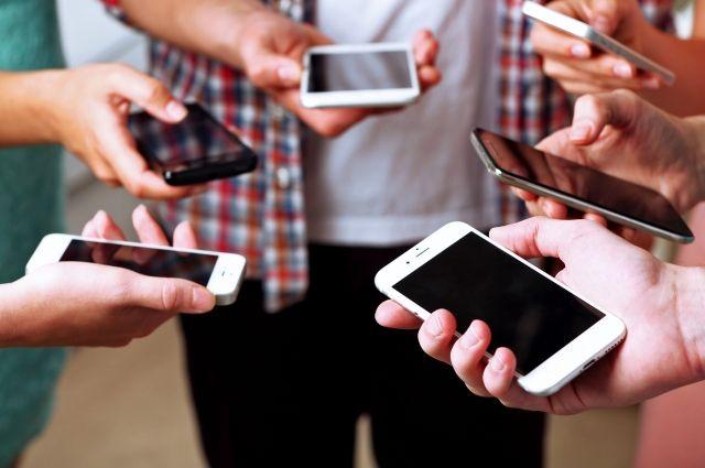 Телеграм-бот помогает тобольским школьникам и студентам