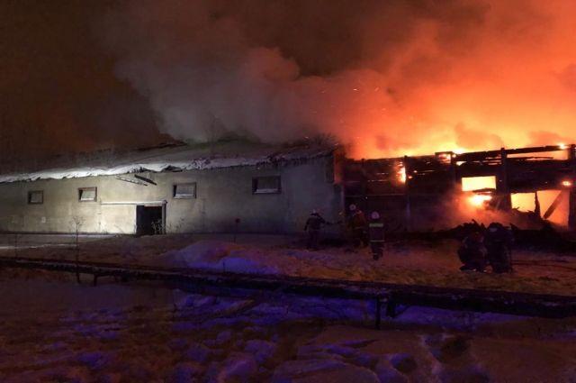 Огонь охватил 1000 квадратных метров.