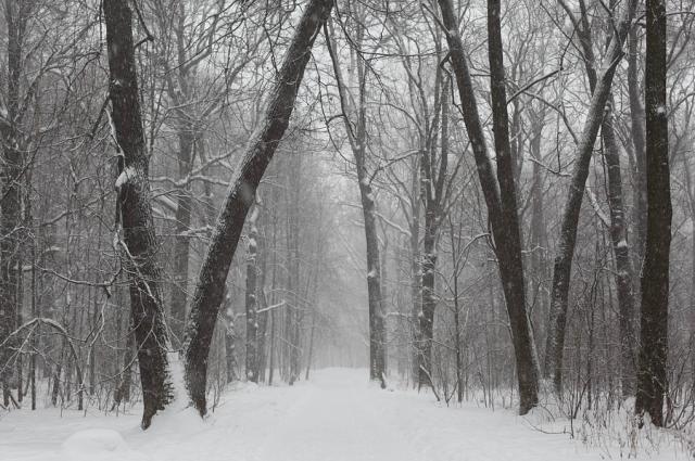 С 7 по 8 января в Томской области местами сохранится аномально холодная погода с минимальными температурами воздуха -35°С и ниже.