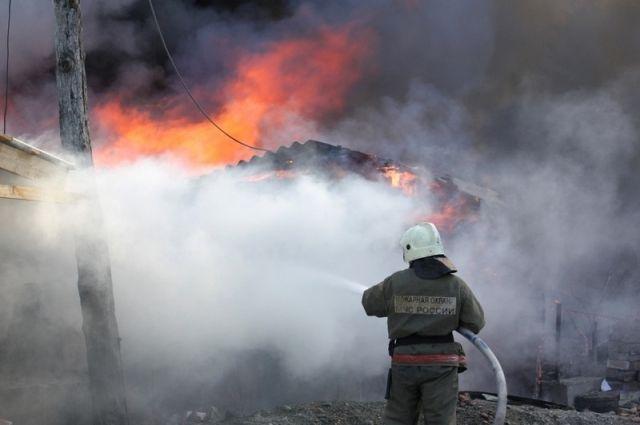 Площадь пожара составила 60 кв. метров.