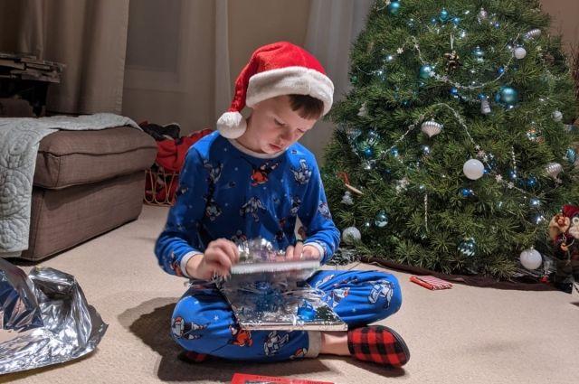 В Канаде за приход гостей в Новый год можно заплатить штраф в 600 тысяч рублей.