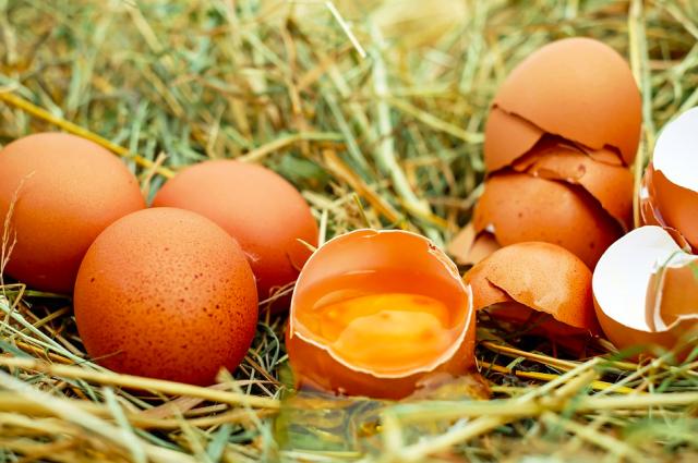 В Оренбуржье больше всего выросли цены на яйца, огурцы и помидоры.