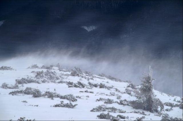 Спасатели объявили штормовое предупреждение в Карпатах.