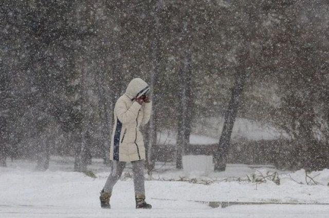 На юге РФ ожидаются сильные морозы, метели и гололедица