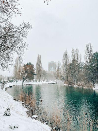 Гагаринский парк в Симферополе.
