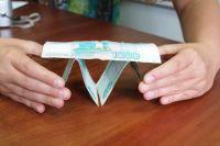 В Оренбуржье пресечена деятельность финансовой пирамиды «Союз-Зберзайм».