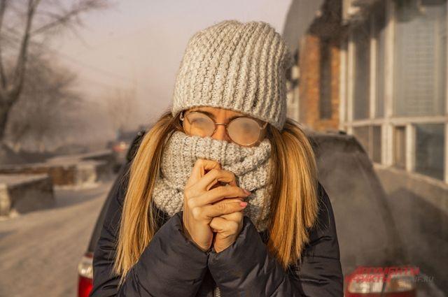 Резкое похолодание надвигается на Новосибирскую область. В некоторых районах региона ожидаются морозы до -42 градусов.