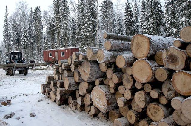 Правительство поддержало инициативу «Единой России» распространить ипотеку на деревянные частные дома.
