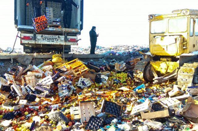 Более 20 тонн овощей и фруктов уничтожены на полигоне