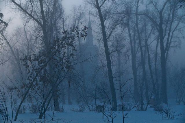 Жителям Тюменского района рекомендуют провести выходные дома из-за морозов