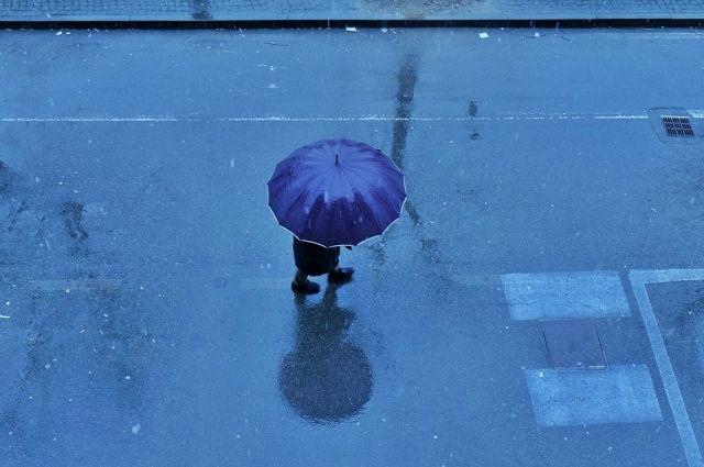 Неделя в Оренбуржье неделя завершится пасмурной погодой с моросящим дождем и мокрым снегом.