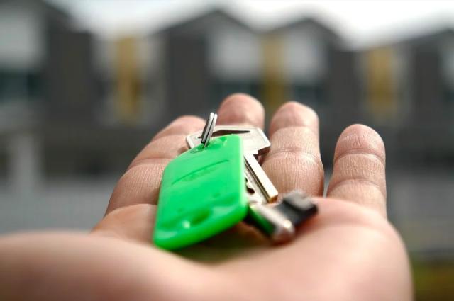 Наибольшее количество ипотечных займов выдано по программам с господдержкой.