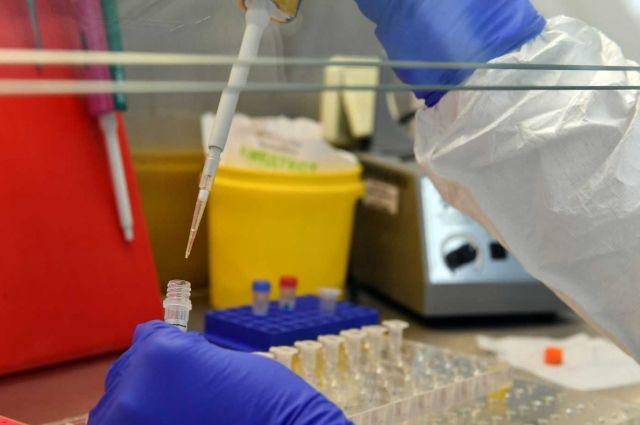 На Ямале за сутки зарегистрировано 89 новых случаев заболевания COVID-19