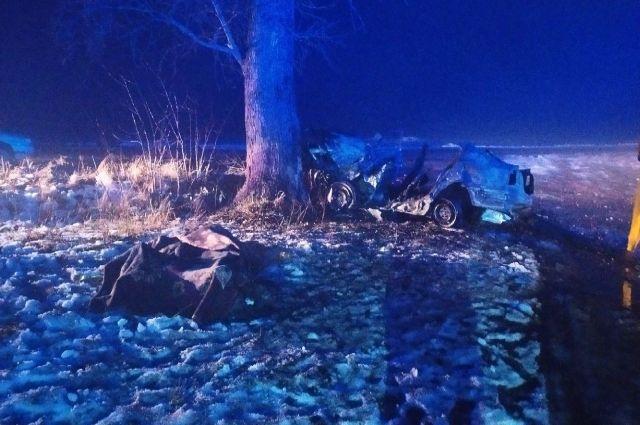 В Житомирской области автомобиль врезался в дерево и загорелся: есть жертвы