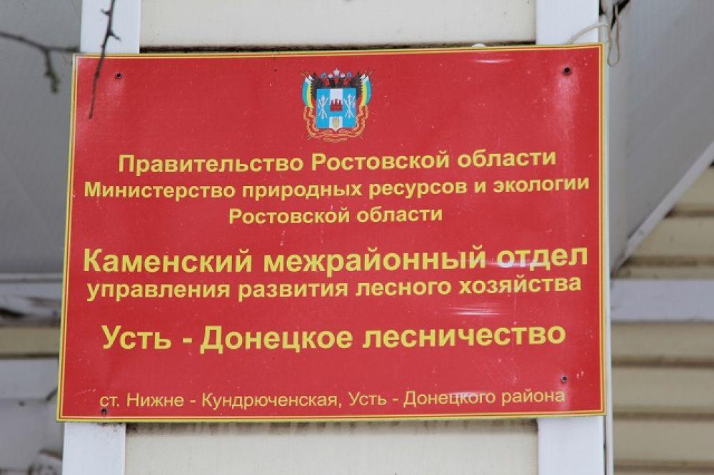 Хвойные леса  Усть-Донецком районе находятся под охраной государства.