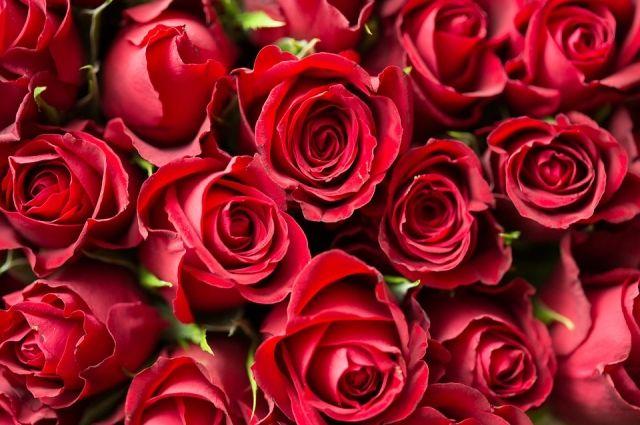 Хотел помириться с любимой: ижевчанин похитил из магазина букет из 25 роз
