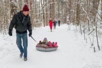 Отдых в лесу не только хорошее время препровождение, но и польза для здоровья.