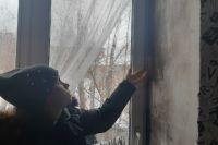 Плесень на стенах в вечно мокнущем доме появляется мгновенно.