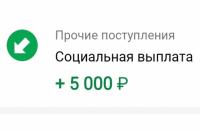 Пенсионный фонд России напоминает гражданам о сроках подачи заявления на единовременную детскую выплату в размере 5 тысяч рублей.