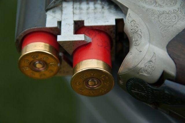 Жителю Красногвардейского района грозит4 года тюрьмы за хранение оружия и патронов.