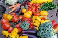 Если сорта и гибриды подходят, урожай будет даже при неблагоприятной погоде.