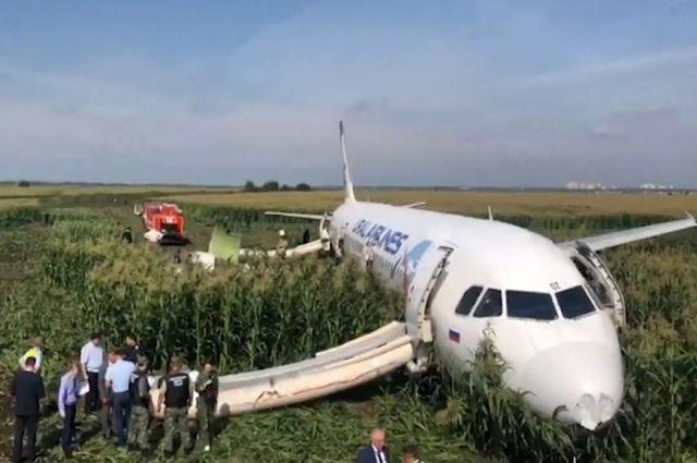 После аварийной посадки на кукурузном поле все пассажиры и члены экипажа остались живы.