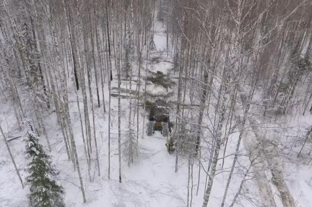 С помощью систем фото- и видеофиксации можно контролировать работу на всех этапах лесозаготовки.