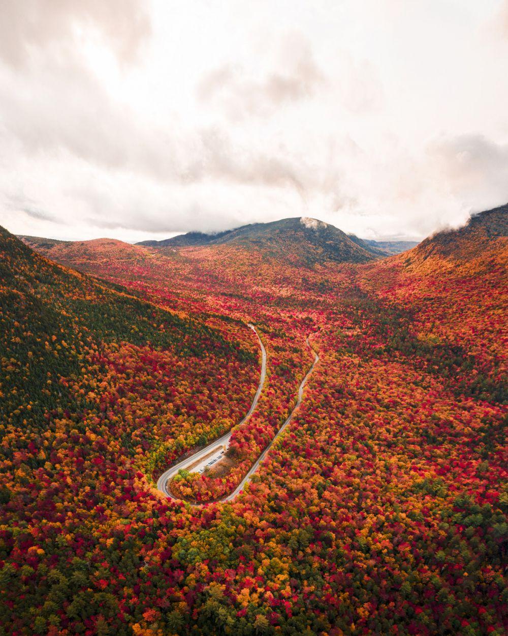 Также жюри отметили работу 17-летнего Бена Скаара из США: осенние краски в Белых горах Нью-Гэмпшира.