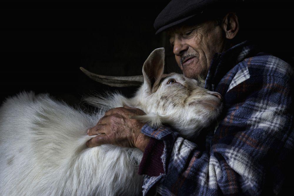 Абилиу да Фонсека всегда был фермером. Сейчас ему более 80 лет, и он проводит большую часть времени, заботясь о своих животных.