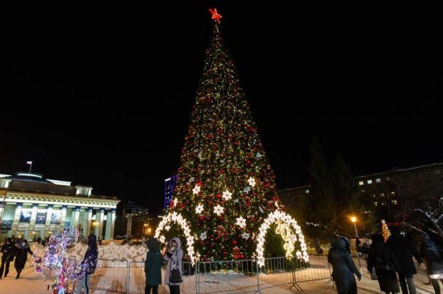 Демонтаж главной елки на площади Ленина в Новосибирске задерживают на три дня. Разобрать символ Нового года должны были 31 января, однако сроки пришлось сдвинуть из-за несанкционированных митингов.