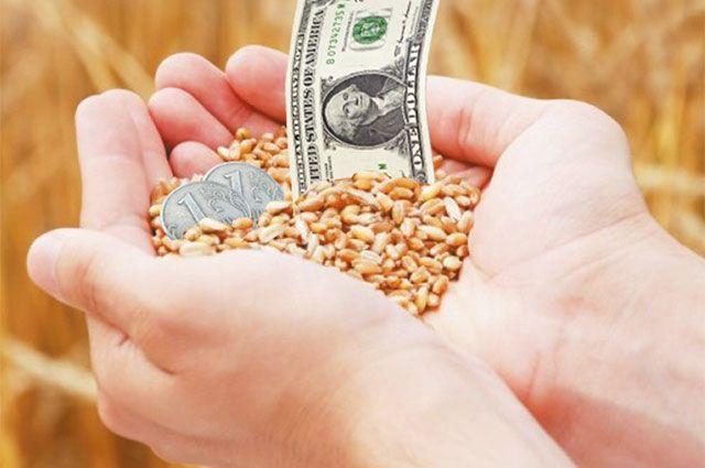 Экспорт зерна и бобовых культур в январе 2021 года вырос в 2,5 раза