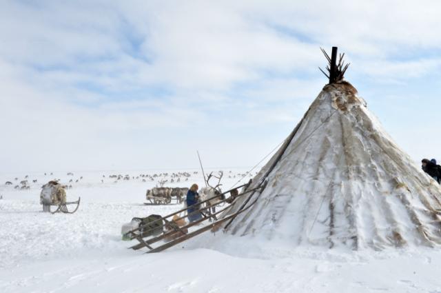 Рассказы, вошедшие в книгу, о мифологии коренных народов и природных богатствах округа