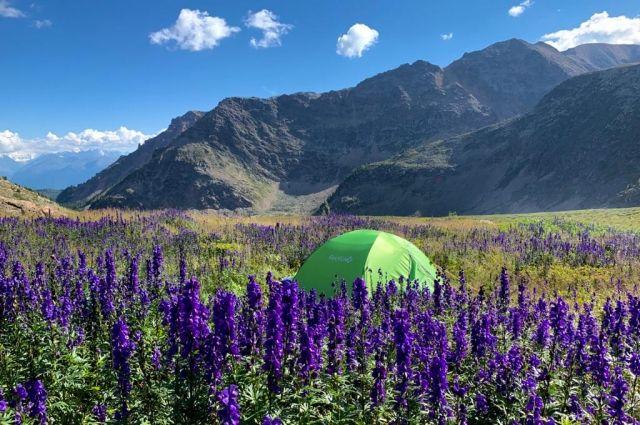 Республика Алтай получит из госбюджета 115 млн на решение проблем экологии