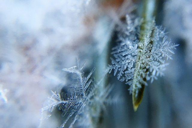 В ночь на вторник, 9 февраля, 30-градусные морозы вероятны уже на значительной части территории края.