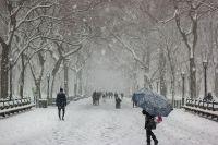 Погода на 9 февраля: в большинстве областей страны ожидается снегопад