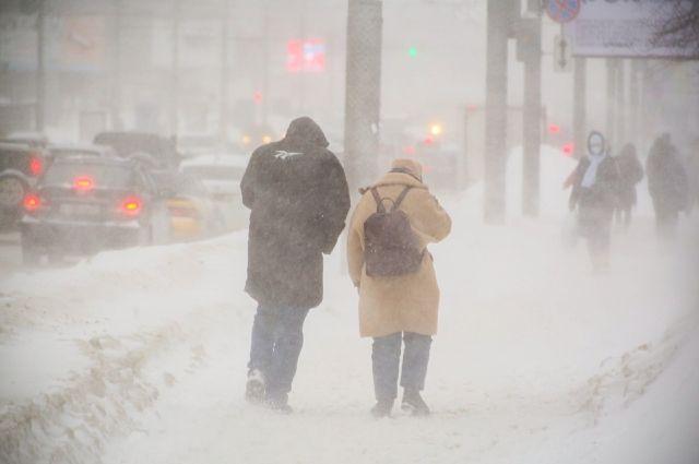 В Новосибирской области 9 февраля ожидается порывистый ветер до 23 м/с.