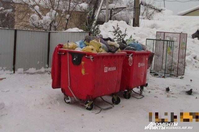 В регионе эпизодически возникают проблемы с вывозом мусора.