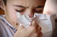 Новосибирцы массово простудились.