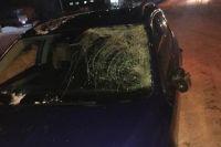 В Житомирской области автомобиль совершил наезд на 23-летнего пешехода.