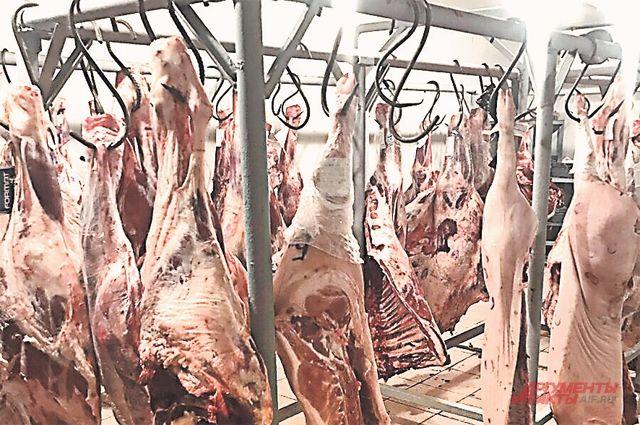 Мясо в азиатский регион поставляет единственное свиноводческое предприятие
