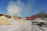 В пожаре погиб 28-летний директор производства