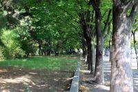 Общественные места благоустроят в рамках программы «Формирование современной городской среды».